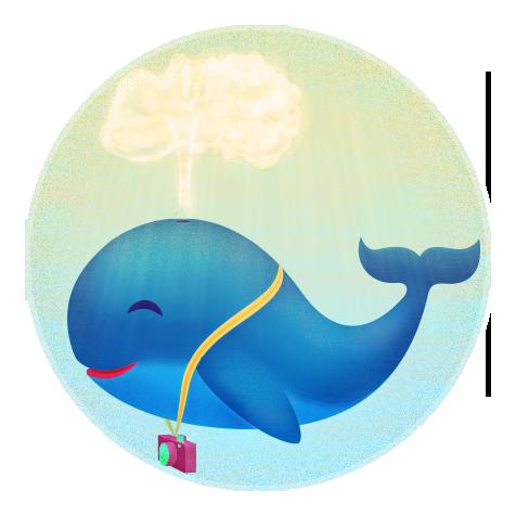 La historia i versions de la meva Balena